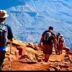 登山時果皮到底可不可以丟在山中呢?原來這些果皮丟在土中會....