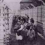 大屠殺不僅僅是歷史,也是警示:《黑土》選摘(1)