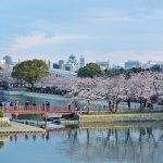 天災多、人口老化、英文程度夠低,日本眾多「社會問題」竟吸引外資湧進!