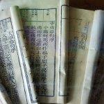 觀點投書:讀中文系的人,應該反對課綱微調