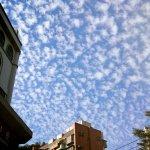 抬頭看藍天白雲了嗎?台北「爆米花雲」超紓壓