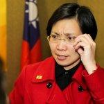 民國黨中常會通過 徐欣瑩續任黨主席