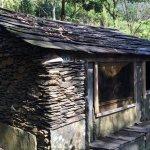 原民觀點:呼吸的石版屋,舊好茶的保存之路