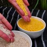 基因改造食品遭誤解 英國皇家學會籲歐洲放鬆禁令