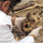 「人骨閱讀者」從人骨尋找古代社會資訊片段的考古學家