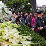 楊照專文:我的外祖父 死於二二八