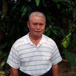 金煌芒果問世50周年 金煌伯這樣打造六龜黃金傳奇