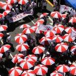 《紅十字會法》可修不可廢 王清峰:若廢法將聲請釋憲