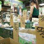 農產公司未曾鋪貨傳統市場 颱風季以「管銷費」補貼量販店
