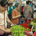 風評:邱太三學郝柏村抓菜蟲,25年的不長進