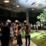 讓陽光和綠意探入另一個空間 紐約市打造全世界第一座「地下公園」
