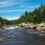 「小蜜蜂爺爺」創辦人捐贈3萬公頃土地 讓美國又多了一座國家公園