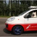 好酷!百度無人車參加駕照考試,司機是兩條狗