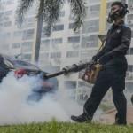 新加坡茲卡病毒持續肆虐 病例破百 1孕婦確診