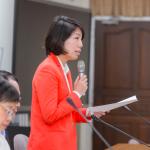 再有民進黨立委赴香港遭拒 余宛如無緣世界社企論壇