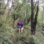 遭批「掐死登山」時代力量撤回登山管理條例