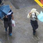 台南半天颱風假惹議 綠委:氣象局預測失準該不該道歉?