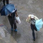 梅姬颱風》嘉市運動會照常舉辦 遮雨棚塌女童送醫