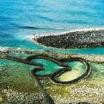南台灣跨領域合作 培育皮珊瑚提升海洋競爭力
