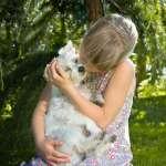 愛跟狗狗親吻,可能惹病上身!醫學教授:人體這3處接觸狗狗口水,絕對會後悔