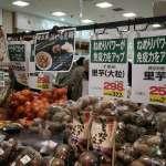 「輻射對健康和環境都有影響」實際走訪車諾比、福島 美博士:動植物都受到基因損害