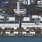 「食藥署淪毒藥署」 福島再傳震災 輻射食品解禁座談會炮聲隆隆