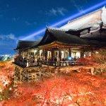 為何參拜京都寺院要收費?推出燈光秀撈錢、為逃稅而罷工,一探和尚驚人銅臭味!