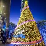 台北101早已耶誕氣氛濃厚 其中閃耀金色的這棵耶誕樹你有注意到嗎?