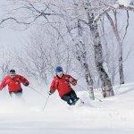 冬天就是要滑雪!王子大飯店與雄獅旅行社精選5座日本必去滑雪場