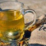 許怡先談生普:入門三招,買普洱茶就是這麼簡單