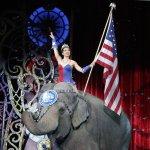 「地表上最偉大的演出」、美國百年傳奇「玲玲馬戲團」曲終人散幕落