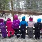 也是一種北歐教育 幼稚園帶小朋友參觀屠宰馴鹿作業惹議