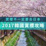 賞櫻日本去膩了?別忘了還有韓國可以選啊!首爾、釜山當地人都推薦的9大賞櫻景點