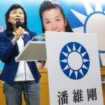 國民黨主席選舉》潘維剛談「800壯士」心疼哽咽:蔡總統應該去探視