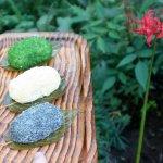 洪金珠專欄:彼岸紅豆餅