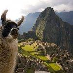 世界上最美的10大廢墟!一座比一座還迷人,欣賞古蹟時還要小心被羊駝攻擊啊