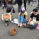 311反核遊行》「NO NUKES」千人怒吼要求蔡英文兌現「非核家園」