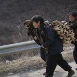 中朝關係緊張   更多北韓難民恐被遣返
