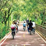 台中假日何處去?3條絕美自行車路線飽覽大甲溪沿岸風光,出遊也能順便減肥呀