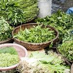 為何有機食品一年產值超過40億,在台灣卻難以推動?原來背後充滿了農民的心酸