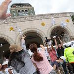 「司法菁英做出來的釋憲案」幸福盟:不排除任何形式社會運動