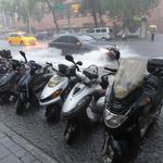觀點投書:一場梅雨釀成政治土石流,荒誕的台式民粹!