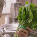 蔬菜用水煮、清蒸、快炒哪個最營養?竟然8成網友都答錯,這題營養師證實給你知