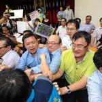 風評:具有台灣特色的民主─國會打架爽到誰?