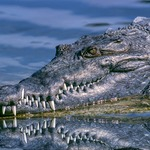 他在河邊被鱷魚拖入水中消失不見…家屬找女巫作法後,竟用這樣的方式「回來」了