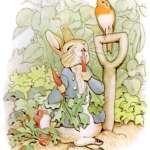 歷史上的今天》7月28日──經典繪本「彼得兔」作者、英國女插畫家碧雅翠絲.波特生日快樂!