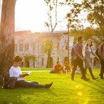 為何哈佛、劍橋名校可以完全開放,中國北大、清華卻在討論「限制遊客」參觀校園?