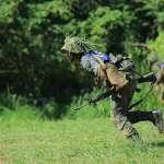 張若羌觀點:用帥打仗的國防部