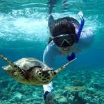 夏天一定要學起來的水下自拍技巧!在馬爾地夫工作的她,不藏私公開拍美照5大絕招