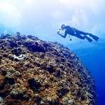難得到水裡,一定要留下美照!她公開水下拍攝技巧,預備5秒內做到這些事很重要